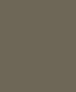 McKenna Academies Symbol